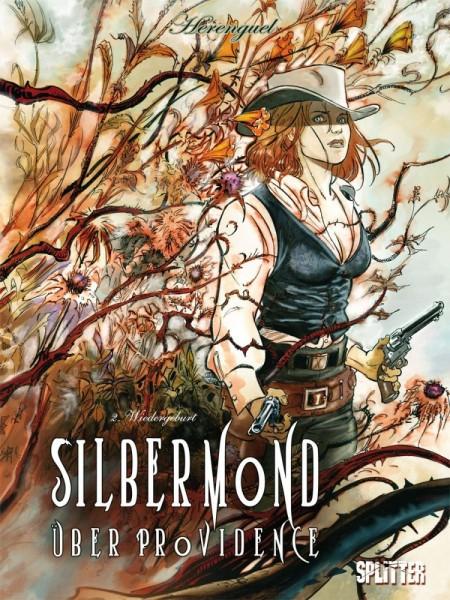 Silbermond über Providence 2